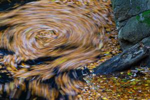 Herbstliche Bode im Harz