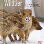 Wildtierimpressionen Cover