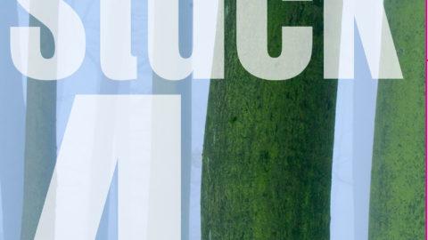 Winter-Cover für Waldstück