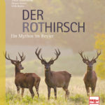 cover_rothirsch