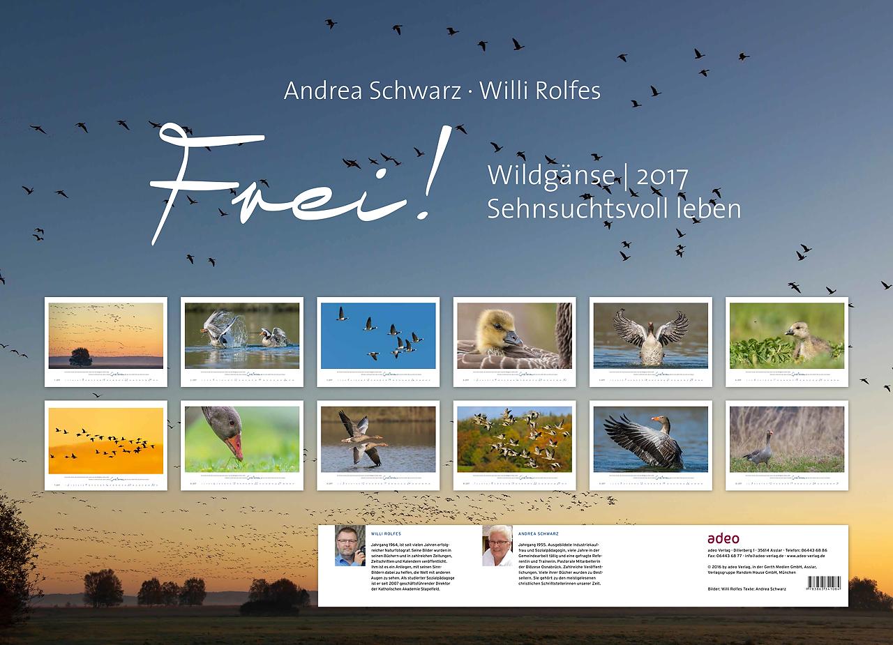 schwarz_rolfes_frei_wildgaense_2017-4-15