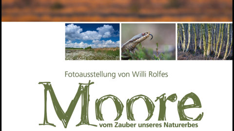 Moore – Vom Zauber unseres Naturerbes