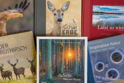 Sommer-Akademie: Der Weg zum eigenen Bildband