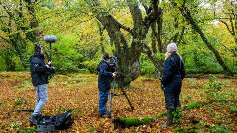 Mit NDR Filmteam im Urwald