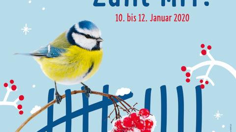 Stunde der Wintervögel