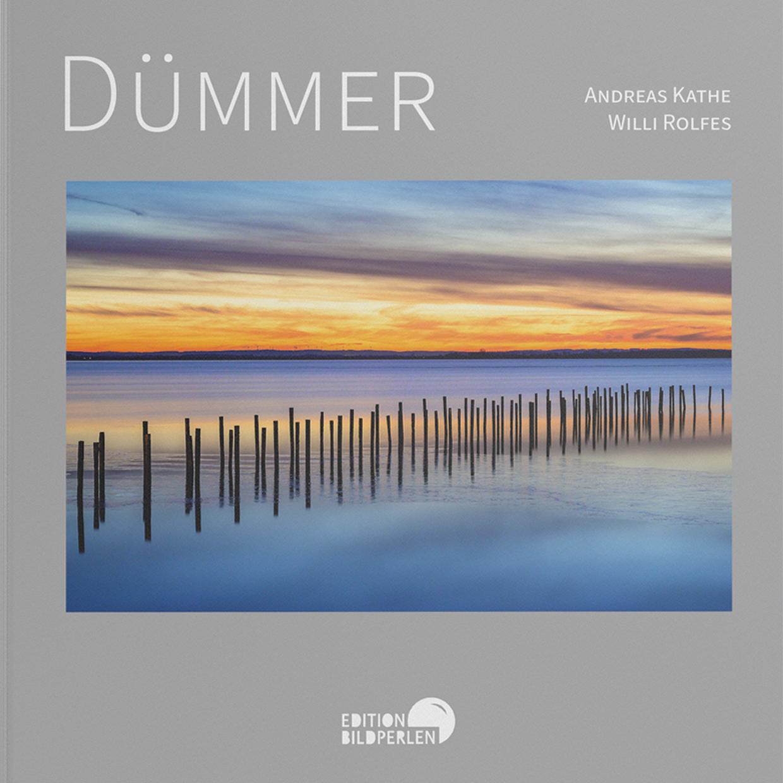 Buchcover Dümmer